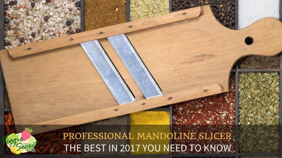 BEST PROFESSIONAL MANDOLINE SLICER 2017